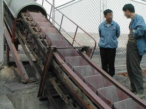 LD Chain Bucket Conveyor